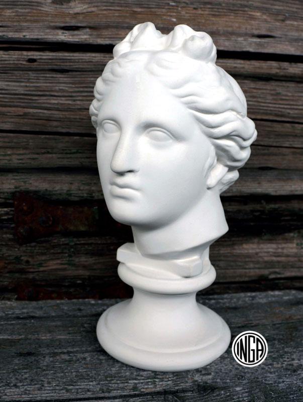 Busto Apollino de Medici in gesso