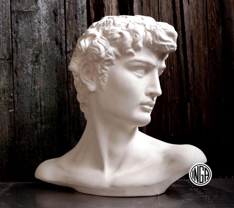 Busto David di Michelangelo in gesso