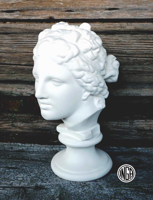 Busto Venere de Medici in gesso