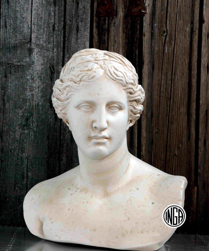 Busto Venere di Milo in gesso